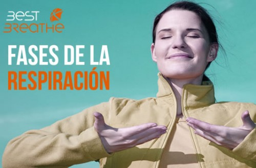 noticia BEST BREATHE fases de la respiracion
