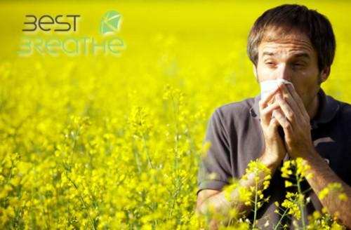 noticia 43 consejos polen